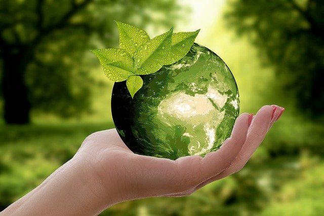 עסק ידידותי לסביבה